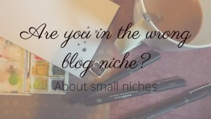 Are you in the wrong blog niche- about blogging in a small niche!
