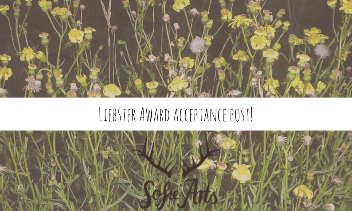 Liebster Award acceptance post!